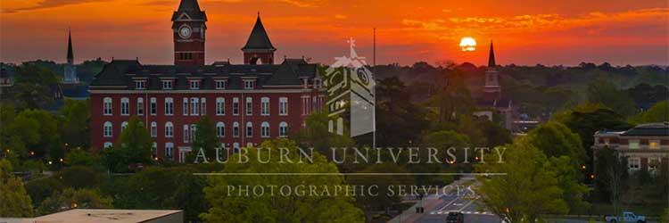 Auburn Skyline